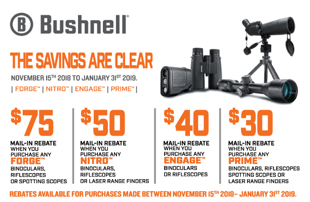 Bushnell Saving Are Clear