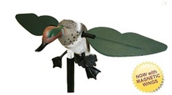 Picture of Mojo Outdoors Decoy - Mojo Teal w/Magnetic Wings