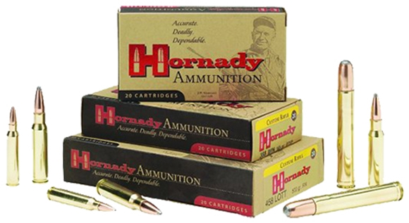 Picture of Hornady Dangerous Game Rifle Ammo - 375 H&H, 300Gr, DGX, 20rds Box