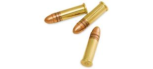 Picture for category Rimfire Ammunition