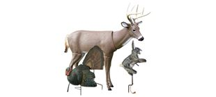 Picture for category Decoys